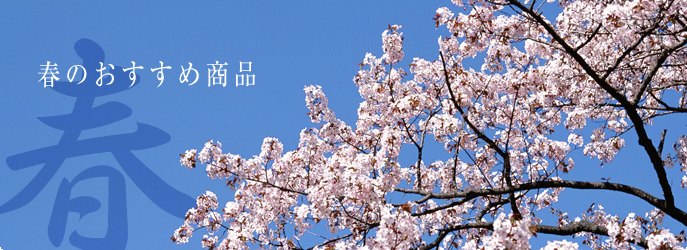 四季:春 季節限定小城羊羹 梅羊羹 ほんのりとした梅の風味と、あっさりとした塩の... [春]